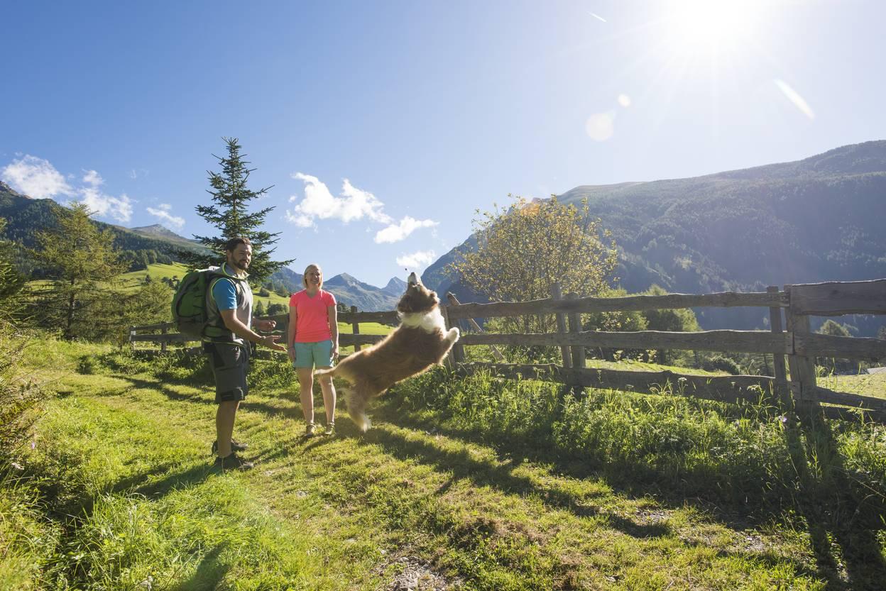 Wandern Nationalpark Hohe Tauern
