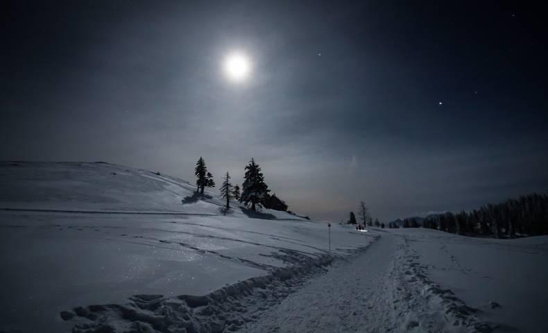 Geführte Vollmond-Schneeschuhwanderung in Kärnten - im Naturpark Dobratsch.