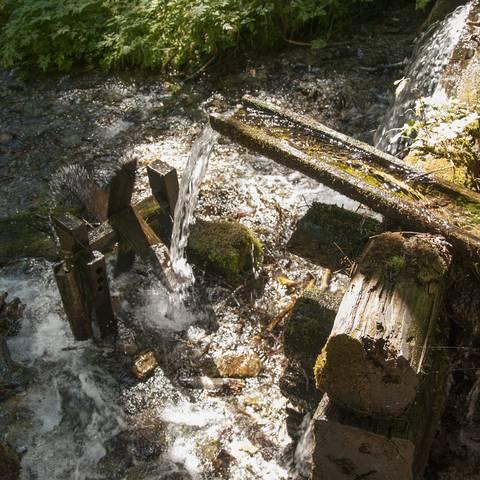 Tiebelquellen in Himmelberg in den Nockbergen