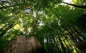 Waldseilpark Tscheppaschlucht Ferlach