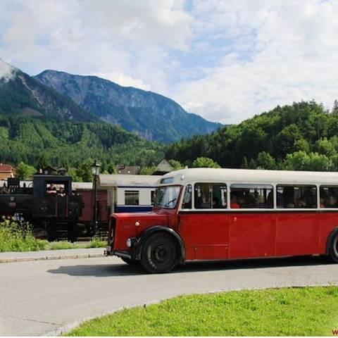 Nostalgiebahn Schnauzenbus